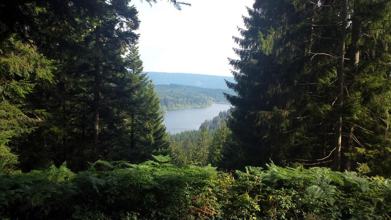 Blick auf die Schwarzenbachtalsperre
